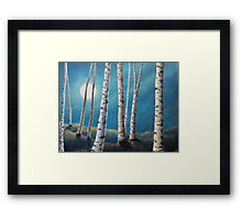 Silver Birch Moon Framed Print