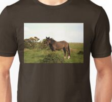 The Ridiculously Photogenic Dartmoor Pony Unisex T-Shirt