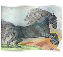 Majestic Arabian in Pencil Poster