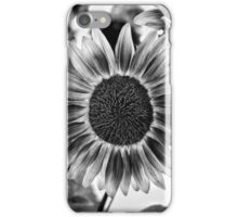 Black and White Sunflower iPhone Case/Skin