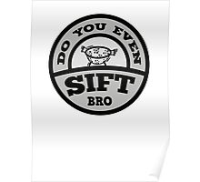 Do You Even Sift Bro? Poster