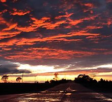 Fire in the Sky by Melody Ricketts