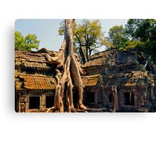 Giant tree root at Ta Promh Temple Cambodia Canvas Print