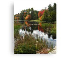 Autumn in Templeton  Canvas Print
