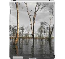 Wooroolin Wetlands iPad Case/Skin