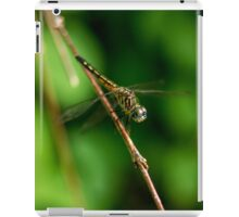Dragonfly iPad Case/Skin