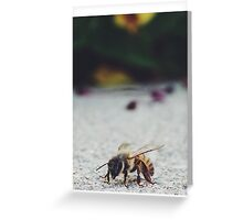 Bee Life Greeting Card
