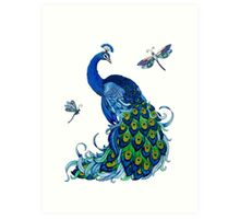 Peacock and Dragonfly Design Art Print