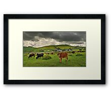 An African Farm Framed Print