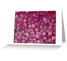 Graphic Boxes, Pink (Wallpaper, Background) Greeting Card