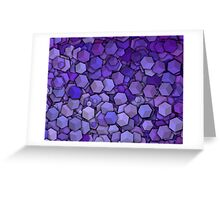 Graphic Boxes, Violet (Wallpaper, Background) Greeting Card