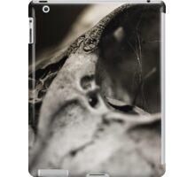 Decay 6 iPad Case/Skin