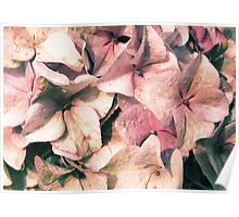 Powder Pink is Beautiful Poster