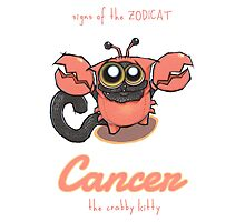 Signs of the ZODICAT - Cancer: The crabby kitty Photographic Print