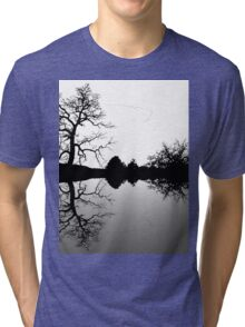 Wild Geese V Formation Tri-blend T-Shirt