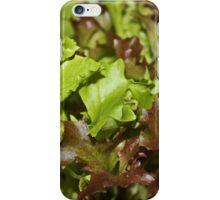 Salad Bar iPhone Case/Skin