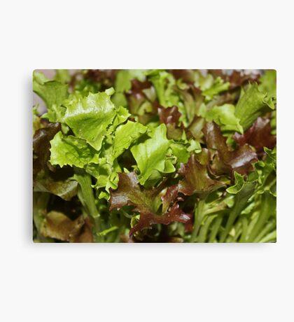 Salad Bar Canvas Print