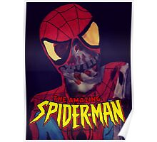 THE AMAZING SPIDERMAN? Poster