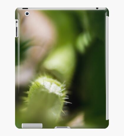 Pumpkin Stems iPad Case/Skin