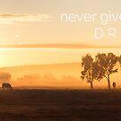 never give up on your D R E A M S  by Michelle Cocking