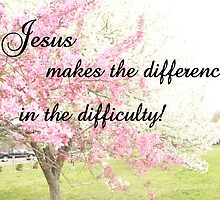 JESUS MAKES A DIFFERENCE IN THE DIFFICULTY! by Pauline Evans