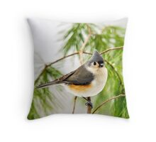 Winter Pine Bird Throw Pillow