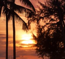 Sunset at a coastline with palm trees Sticker
