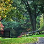 Walk in the Park Fall Landscape by Christina Rollo