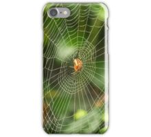 Large spider web in the middle iPhone Case/Skin