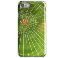 Spider web in the middle iPhone Case/Skin
