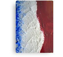 The flag of France  Metal Print