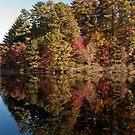 Lake Unicoi by Evelyn Laeschke