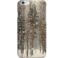 Scenic Snowfall Landscape iPhone Case/Skin