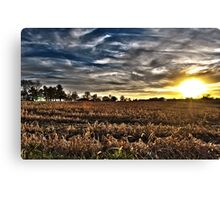 Sunset On The Field Canvas Print