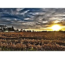 Sunset On The Field Photographic Print