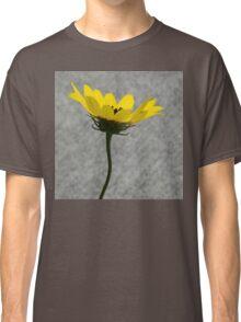 Peek-a-boo Classic T-Shirt
