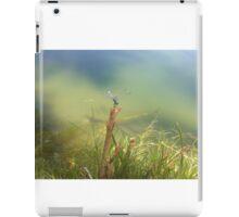 Dragonfly Serenity iPad Case/Skin