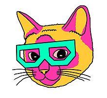 Crazy Cat by meganbxiley