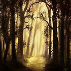 The forest by Richard Eijkenbroek