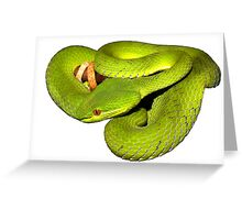The white-lipped pit viper Greeting Card