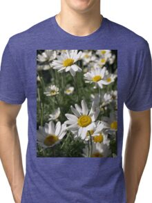 LARGE DAISY SUN WORSHIPPERS Tri-blend T-Shirt