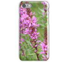 flower purple grass crybaby iPhone Case/Skin