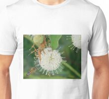 Bee hovering by odd flower Unisex T-Shirt