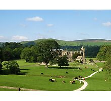 Bolton Abbey, Wharfedale, N. Yorkshire Photographic Print