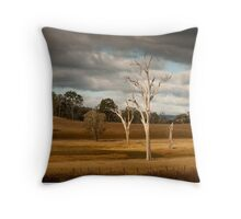 Along a Beaten Track Throw Pillow