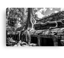 The Trees of Ta Prohm Canvas Print