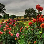 Beautiful Garden in HDR by Vicki Spindler (VHS Photography)