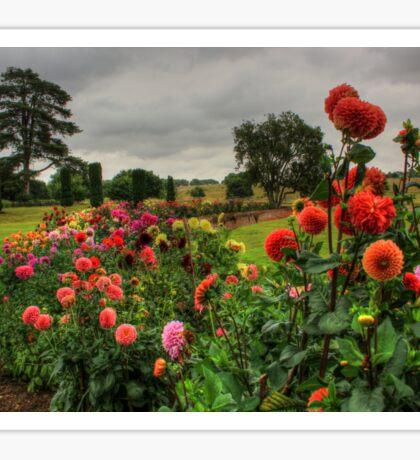 Beautiful Garden in HDR Sticker