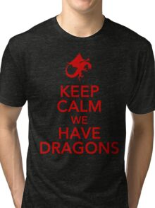 Keep Calm We Have Dragons Tri-blend T-Shirt