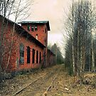 Tracks In Norberg by Barry W  King